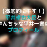平井大臣 アイキャッチ