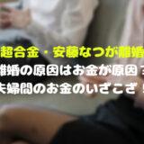メイプル超合金・安藤なつが離婚調停中!離婚の原因はお金が原因?夫婦間のお金のいざこざ!