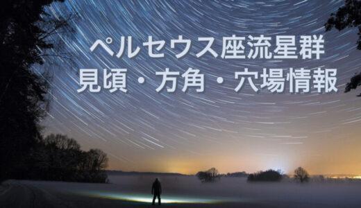 ペルセウス座流星群2021天気は?ピークと方角・見える場所と穴場情報